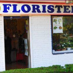 floristeria el paraiso