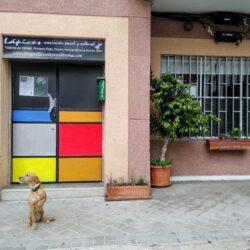 escuela de arte LAPICES ARTE Y MÁS